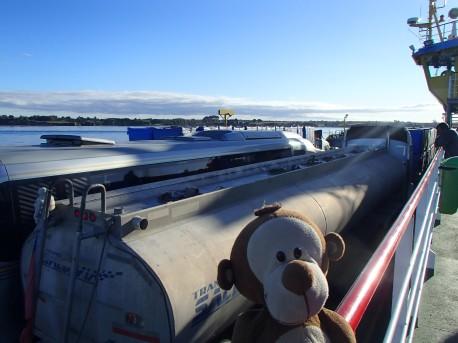 Mucuvinha no ferry para Chiloé