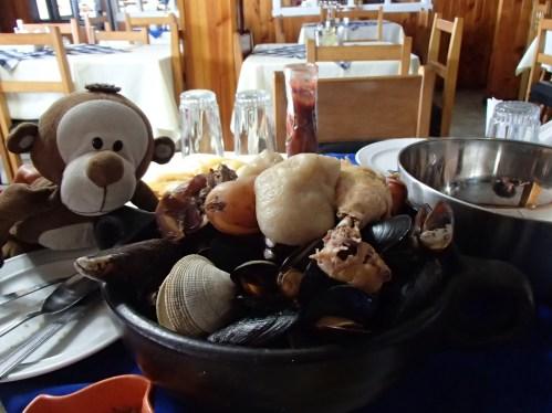 Mucuvinha comendo curanto em Chiloé